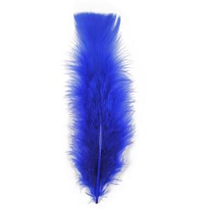 plume-bleu