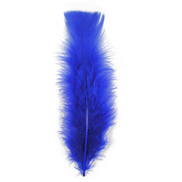 les plumes saint g ly saint cl ment badminton